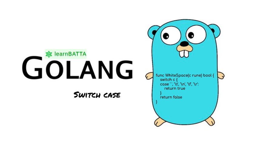 Golang Switch Case